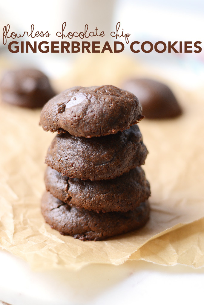 Flourless Chocolate Chip Gingerbread Cookies