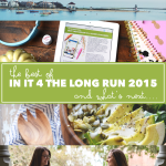 The Best of In it 4 the Long Run in 2015 & What's Coming Next